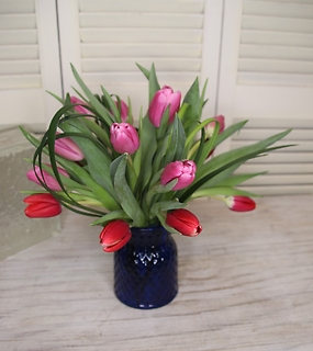 Local grown tulips