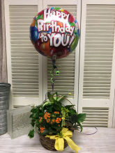 Garden planter and Balloon
