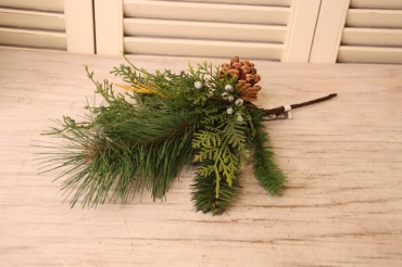 Evergreen and juniper